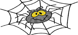 fear of spiders phobia